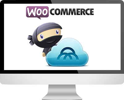 Woo Commerce Theme development company