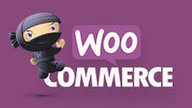 Best woocommerce development company